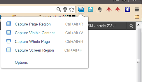 Chrome Web Store   Screen Capture 3by Google