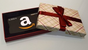 Amazon Gift plaid (4)